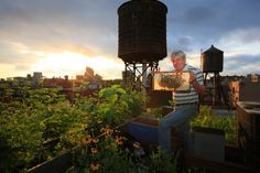 "Beekeeping in the city reduces food miles and makes good use of rooftops and backyards • Photo of a beekeeper in New York City by Eric Tourneret, ""the Bee Photographer"""