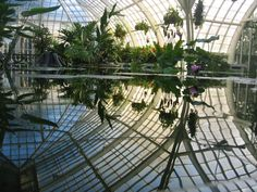 The magical pools in the Aquatic Plants Gallery supposedly recreate the flow of a river winding through the tropics. This will leave most anyone speechless.