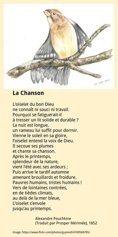 Alexandre Pouchkine – La Chanson Author Quotes, Literary Quotes, French Language Lessons, Reading Practice, Learn French, Bear, Friends, Life, Frases