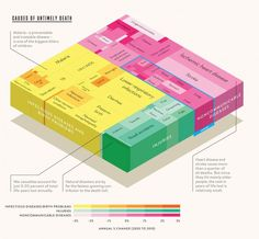 Causes of death worldwide, from the Bill and Melinda Gates Foundation