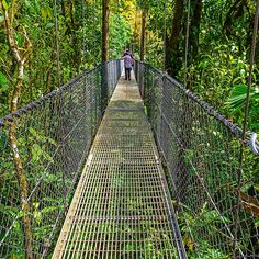 Experience the marvelous views of this Costa Rica Tortuguero Panoramic Tour by VEBO. Couples will enjoy this hour tour as they climb the Tortuguero Hill with a local and enjoy an incomparable panoramic view of the surroundings. Hiking Gear Women, World Most Beautiful Place, Costa Rica Travel, Travel Aesthetic, Volcano, Vacation Spots, National Parks, Tours, Bridges