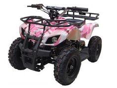 Go Bowen SONORA Electric ATV for sale