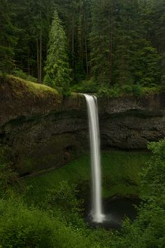 Great HDR photograph. SilverFalls State Park, Oregon