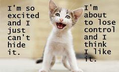 Sing it kitty!