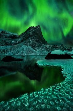 Green Vision, Tombstone Mountains, Yukon Territory, Canada