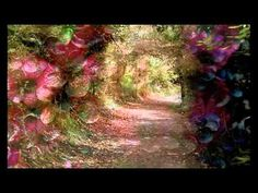 """Secret Garden """"In Our Tears"""" - this moves me to tears and then when the choir joins in, my spirit lifts. Been having this effect on me for 13 years :)"""