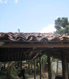 Anadias - Alagoas. - Brasil