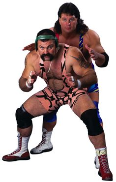 Image from http://img1.wikia.nocookie.net/__cb20131104071519/prowrestling/images/7/72/The_Steiners_Brothers.png.