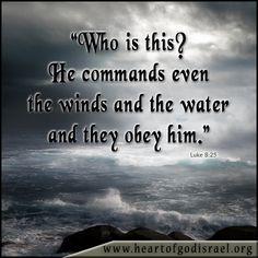 Luke 8:25
