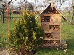 Fabriquer un nichoir à insectes pour favoriser la biodiversité et l'installation des auxiliaires dans son jardin