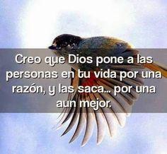 Creo que Dios pone a las personas en tu vida por una razón, y las saca por una aún mejor.