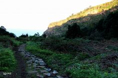 Barranco Ruiz, un sendero bajo el Teide VI