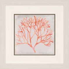 Add marine-inspired charm to your setting with the Paragon Watercolor Coral IV Framed Wall Art. This coral print will arrive to your home matted and framed. Painting Frames, Painting Prints, Art Prints, Beach Cottage Decor, Coastal Decor, Coastal Homes, Framed Wall Art, Wall Art Decor, Art Encadrée