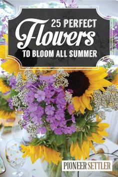 25 Perfect Summer Flowers! Types of flowers that will bloom all summer!http://pioneersettler.com/types-of-flowers-to-plant-summer-flowers/
