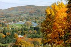 Take a country ride to see the Fall foliage.