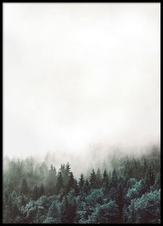 Snygg affisch med skog.