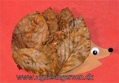 pindsvin fra min blog af karton og efterårsbalde: http://agnesingersen.dk/blog/pindsvin/