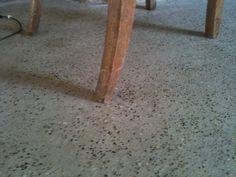sol chape béton Stool, Flooring, Interior, Furniture, Home Decor, Succulents, Decoration Home, Room Decor, Design Interiors