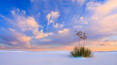 Tularosa basin, New Mexico