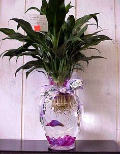 This makes a great gift and so easy to do. 1 Betta fish, 1 Peace Lilly, small plastic tray (cut to hold plant), glass pebbles and an extra Vase.