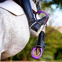 Matchy #GOALS right here ⬆️ #equestrian #horse #horses #equestrianperformance