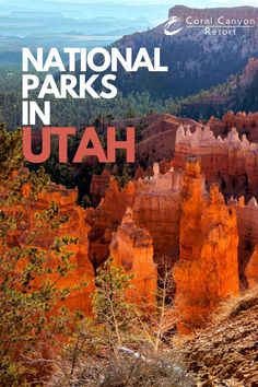 You are going to find the best National Parks in Utah. If you want to explore places with incredible landscapes and enjoy some nature, you must visit Utah because you will find a lot of parks.  #nationalpark #utah #southernutah #hiking #climbing #mountaing #camping