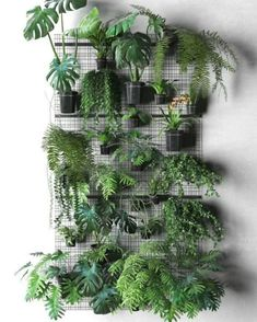 Related posts: 50 Awesome Modern Backyard Garden Design Ideas With Hanging Plants Fantastic Intelligent and Low-cost Indoor Garden Ideas Amazing Ideas For Growing A Successful Vegetable Garden 25 Awesome Unique Small Storage Shed Ideas for your Garden Hanging Plants, Potted Plants, Green Plants, Balcony Plants, Roof Garden Plants, Herb Plants, Tomato Plants, Garden Trees, Shade Plants