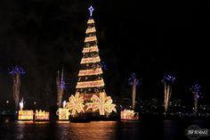 christmas tree, lagoa, rio de janeiro