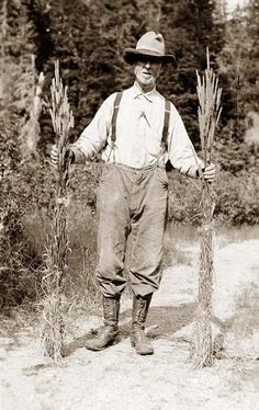 American Farmer You are viewing an unusual image of Mr. Johnson holding stalks of timothy. It was taken in 1916.