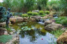 An ecosystem pond can be low-maintenance if you include fish and aquatic plants to help balance the water quality.