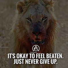 We all will feel beat at one point. That's okay! Just NEVER give up! #success…