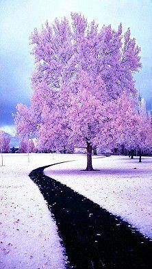Winterfarbe?