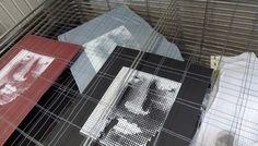 VANportrait Designs and more ...