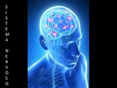SISTEMANERVOSOSISTEMANERVOSO. O sistema nervoso é constituído por células chamadas Neurônios que são responsáveis pela propagação do impulso nervoso.