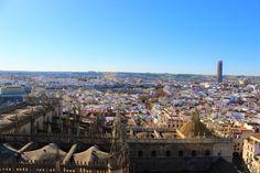 Panorama from La Giralda tower.Sevilla. Spain
