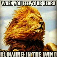 No better feeling.  @beardedvillains by theblackbeard_