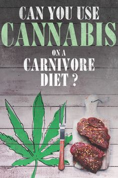 Are you supposed to mix cannabis with the carnivore diet? Is that acceptable? We try to tackle this question and provide some interesting answers from top carnivore diet doctors. Zero Carb Diet, No Carb Diets, Diet Tips, Diet Recipes, Burger Press, Food Portions, Pin On, Diets For Women, Diet Meal Plans