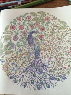 """Uit het kleurboek """"Mijn geheime tuin"""""""