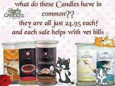 Crazy cat lady with Bestie. Can you please help me the been challenged to sell 5 candles, by Oct 31st. Can u help me by purchasing one? Included a deal as well. Www.jicnation.com/store/missysue