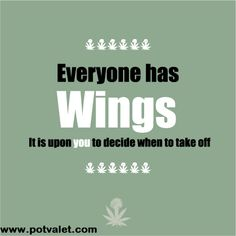 Smoke weed and get wings! #wings #weed #enjoy #happylife #stress #depression #potexam #marijuana #recommendation
