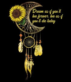 Sunflower Quotes, Sunflower Pictures, Sunflower Art, Hippie Love, Hippie Art, Hippie Quotes, Dream Catcher Tattoo, Sunflower Wallpaper, Cute Wallpapers