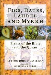 Figs, Dates, Laurel, and Myrrh Plants of the Bible and the Quran