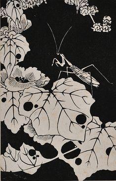 Itō Jakuchū(伊藤若冲) - 玄圃瑤華