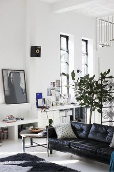 Black leather sofa and green plants for a white room, Amazing idea!