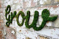 How to Make Moss Graffiti. Creating living, breathing moss graffiti is an eco-friendly and exciting way to make art! Also called eco-graffiti or green graffiti, moss graffiti replaces spray paint, paint-markers or other such toxic. Outdoor Wall Art, Outdoor Walls, Outdoor Living, Outdoor Spaces, Moss Grafitti, Graffiti En Mousse, Growing Moss, Graffiti Wall Art, Graffiti Artists