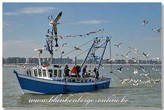 Afbeeldingsresultaat voor vissersboten