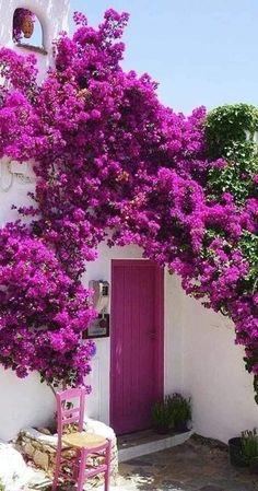 Beautiful Gardens, Beautiful Flowers, Beautiful Places, Beautiful Pictures, Garden Landscaping, Scenery, Around The Worlds, Backyard, Landscape