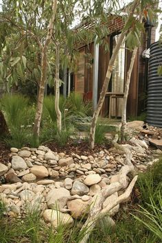 Garden Design for Small Gardens: Give Some Room, Look Bigger Bush Garden, Dry Garden, Garden Beds, Garden Water, Water Gardens, Garden Edging, Australian Garden Design, Australian Native Garden, Back Gardens