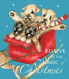 Wheaten Terrier Believe Art Note Cards Artist Darcie Olson free ship USA Best Puppies, Best Dogs, Christmas Images, Christmas Dog, Airedale Terrier, Terriers, Dog Template, Templates, Funny Animals