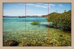 Using the 'Rule of Thirds' is not something that you have to do, but it goes a long way to improving your photography. Read this article to learn how to use it...and not use it.